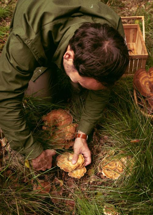 Svampejagt Adam finder svamp